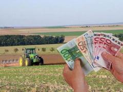 Guvernul a gasit si a aprobat banii pentru plata avansului la subventie