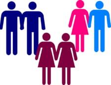Guvernul nu sustine parteneriatul civil intre persoane de acelasi sex: Ar aduce cheltuieli in plus pentru buget