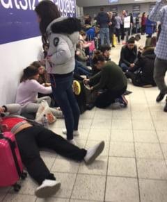 Haosul din aeroportul Luton, provocat de o banala ninsoare. Peste 1.000 de romani blocati la Londra Fotoreportaj