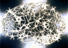 Hipertensiunea si diabetul schimba structura creierului