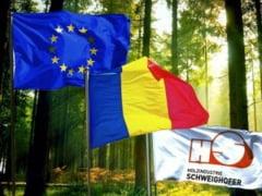 Holzindustrie Schweighofer a implementat un plan de actiune cuprinzator pentru a combate taierile ilegale din Romania