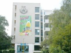 Hotelurile fratilor Micula scot bani din jeg si vara aceasta, cu tot sechestrul ANAF
