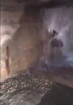 Hotii de fier vechi au distrus o vana metalica din incinta barajului de la Frunzaru
