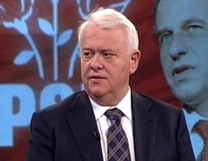 Hrebenciuc: Voi candida la sefia PSD in 2012