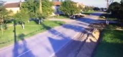 IMAGINI din momentul impactului! Accidentul in care un motociclist a lovit in plin o vaca, nu departe de Timisoara! Atentie, VIDEO-ul va poate afecta emotional!