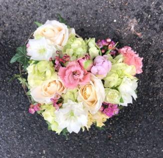 IMOD Flowers – O florarie altfel