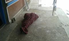 INCA O TRAGEDIE: BATRAN MORT IN INCENDIU