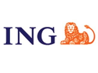 ING vinde din colectia de arta contemporana pe care o detine
