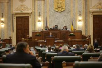 IPP: Parlamentarii PD-L au jucat si rolul Puterii, si pe al Opozitiei