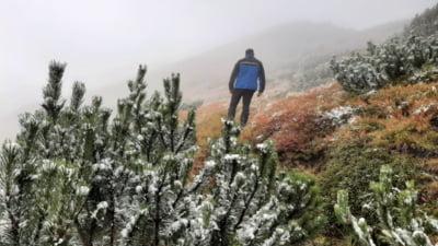 Iarnă la munte. Ceață densă și temperaturi de 0 grade Celsius VIDEO