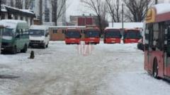 Iesenii vor calatori in autobuze care au circulat in judetul Vaslui