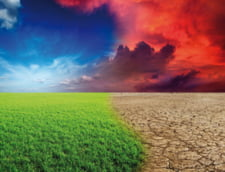 Impactul schimbarilor climatice asupra omenirii. Cum ne afecteaza?