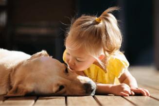 Importanta animalelor de companie in viata copiilor
