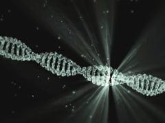 Imunitatea la coronavirus ar putea ramane pe viata. Celulele care pastreaza memoria virusului persista in maduva osoasa si pot produce anticorpi la nevoie