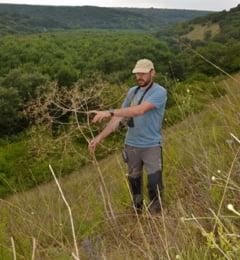 In Dobrogea s-a descoperit o noua specie de planta, cu totul speciala