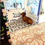 In carantina si-a indeplinit visul de a-si picta intreaga casa. Ce a iesit intrece toate asteptarile (Galerie foto)