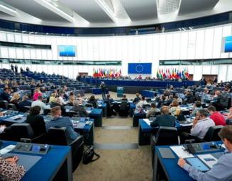 In ce comisii din PE au ajuns romanii: Carmen Avram la agricultura, Grapini la afaceri constitutionale, Tudose la comert