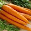 In ce fel ajuta morcovul in prevenirea si tratarea cancerului de prostata