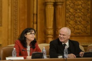 """In comisia condusa de Nicolicea se lucreaza la redeschiderea unor dosare judecate definitiv: """"O absurditate fara limite"""" - Interviu"""