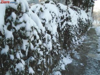 In urmatoarele zile va ninge si nu doar la munte. In Capitala, scad temperaturile cu 10 grade