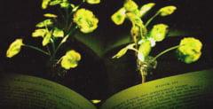 In viitorul apropiat vom putea citi la lumina plantelor (Video)