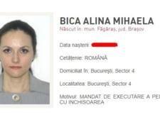 Inalta Curte suspenda judecarea procesului ANRP- Alina Bica. Se asteapta decizia CJUE in cazul completurilor specializate