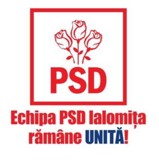 Inca o filiala judeteana i se opune in bloc lui Liviu Dragnea: Conducerea PSD sa anuleze excluderile lui Neacsu si Tutuianu!
