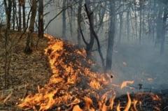 Incendii provocate de tigari aprinse