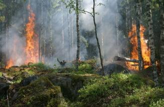 Incendii puternice in Canada: Mii de oameni au fost evacuati