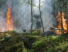 Incendiile din Amazonia s-au restrans usor, dar un boicot international din partea companiilor este in crestere