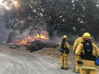 Incendiile din California continua sa faca victime: Sunt 31 de morti si 400 de disparuti