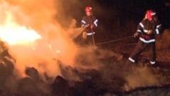 Incendiu de proportii in Constanta la un centru comercial