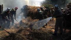 Incendiu de proportii la Tibana