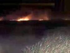 Incendiu in zona lacului Histria, din Constanta
