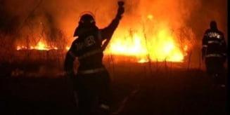 Incendiu intr-un cimitir din Mures!