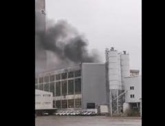 Incendiu la incineratorul de deseuri din localitatea Brazi. La interventie au fost trimise mai multe echipaje de pompieri