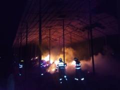 Incendiu la o casa din Nicolae Balcescu. Trupul unui barbat spanzurat a fost gasit in casa
