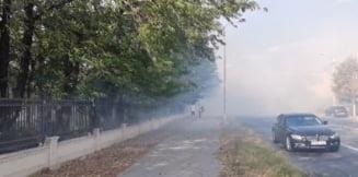 Incendiu uriaș într-un parc din Craiova. Intervenție dificilă pentru pompieri VIDEO