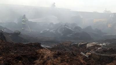 Incendiu uriaș la Adunații Copăceni. Au ars 500 de anvelope uzate și 40 de tone de siloz de porumb