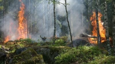 Incendiul de la Cernobil se apropie de centrala nucleara. Exista vreun pericol pentru Romania? Ce spun Alexe si ANM (Foto&Video)