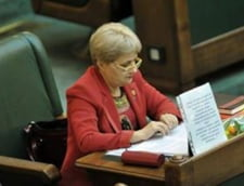 Incident bizar in Senat: Un steag, adus de Ilie Nastase, i-a cazut Cristianei Anghel in cap (Video)