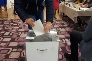 Incident electoral in Criseni
