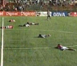 Incredibil: Un meci de fotbal a fost intrerupt de un roi de albine (Video)