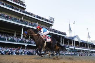 Incredibil! Unul dintre cei mai cunoscuti cai de curse, prins dopat cu steroizi. Stapanul sau neaga ca i-ar fi dat medicamente interzise