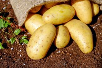 Inflatia continua sa creasca si trece de 4%. Cartofii s-au scumpit cu peste 26% in doar trei luni