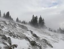 Informare meteo de ninsori, viscol si frig, valabila pana luni