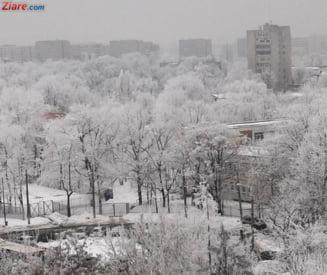 Informare meteo de ninsori in toata tara si cod galben de vant pentru 27 de judete
