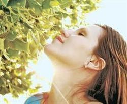 Infuzia de tei are efect antireumatic, expectorant si sedativ