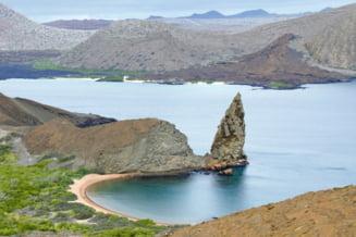 Insulele Galapagos sunt invadate de gunoaie aduse de apele oceanului