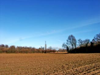 Intabularea terenurilor agricole ar putea deveni gratuita